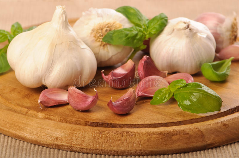 Garlic & Basil stock images