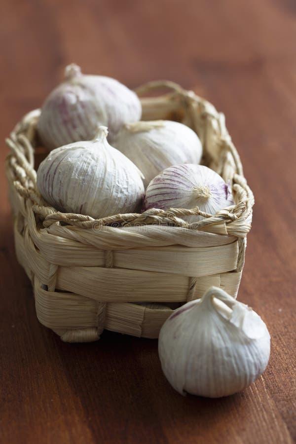 Garlic in the basket stock image