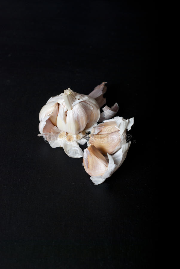 Garlic on black background. Selective focus stock images