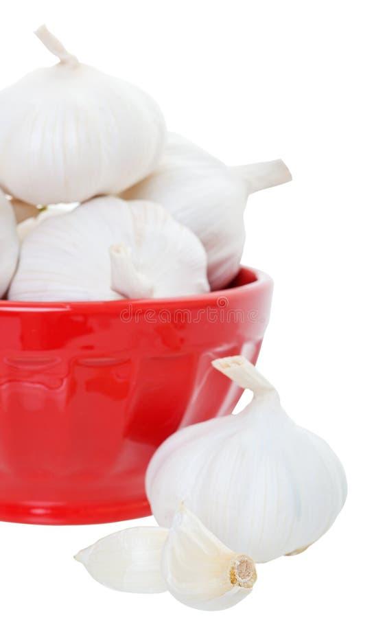 Download Garlic in Bowl stock image. Image of full, bowl, food - 25489897