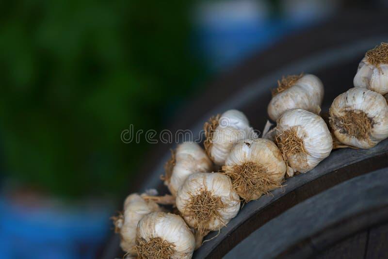 Garlic braid in a restaurant. Of Agios Nikolaos, Crete, Greece onions summer health table market salt midi vintage village green buy sell white plant travel royalty free stock photography