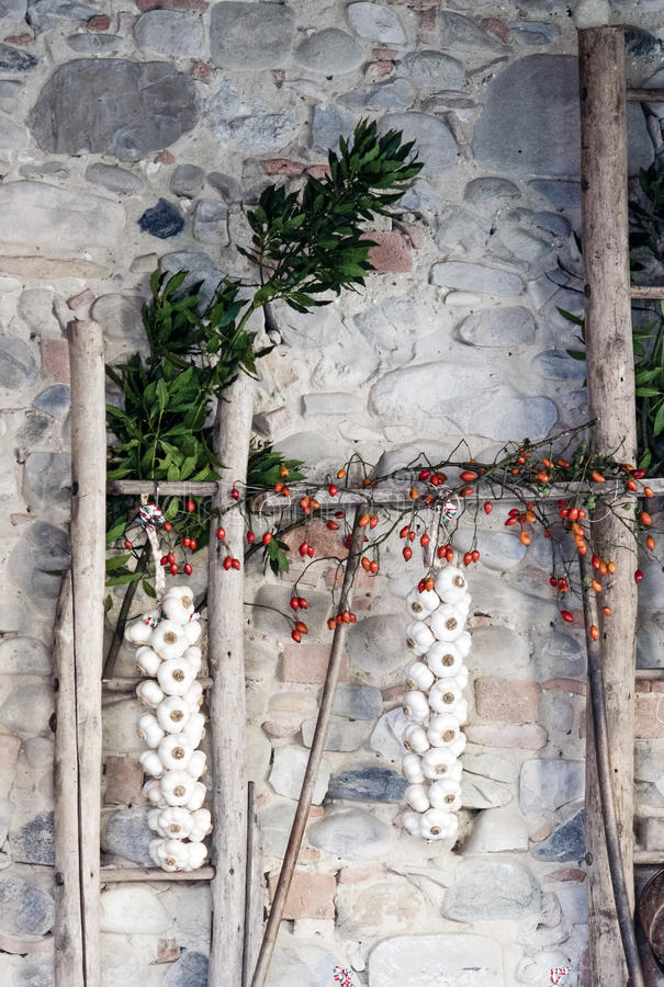 Garlic Braid in a rustic area, hanging from a wood stick. royalty free stock photo