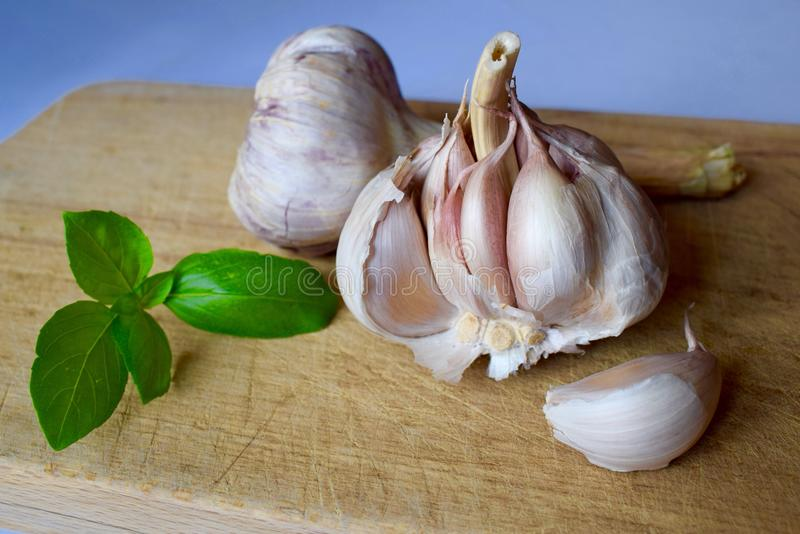 Garlic cloves on breadboard with basil leaf stock image
