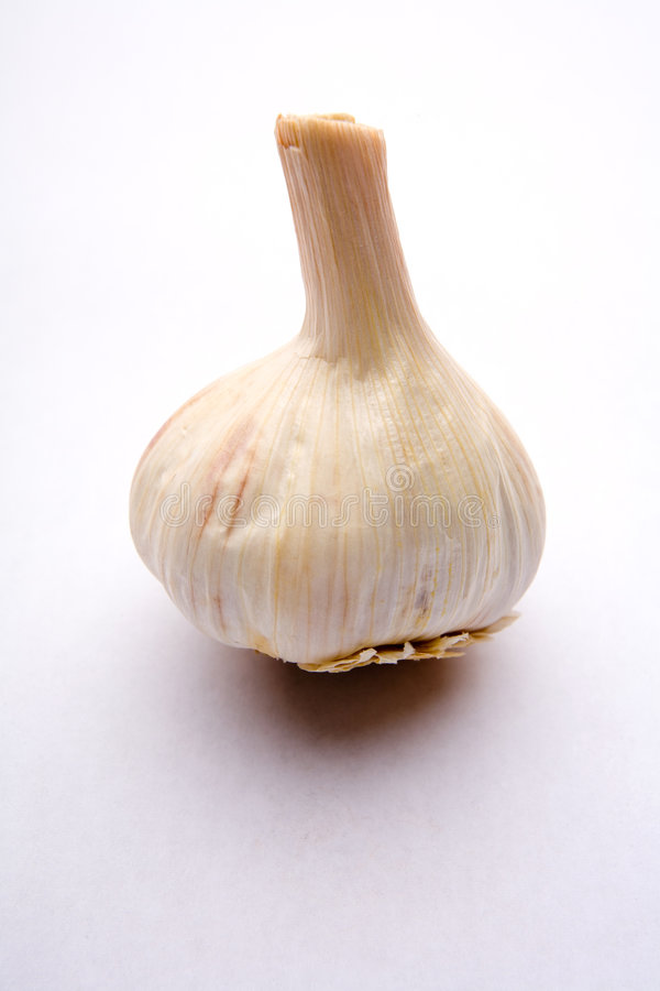 Free Garlic Bulb Stock Photography - 1311342