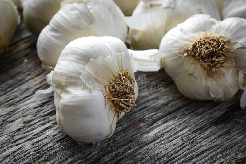 Garlic Bulb Close Up royalty free stock photography