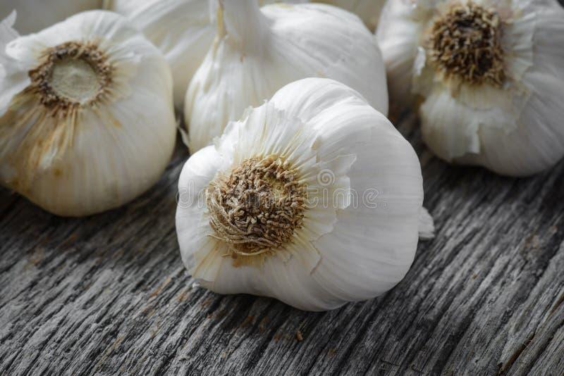 Garlic Bulb Close Up on Rustic Wood stock photo