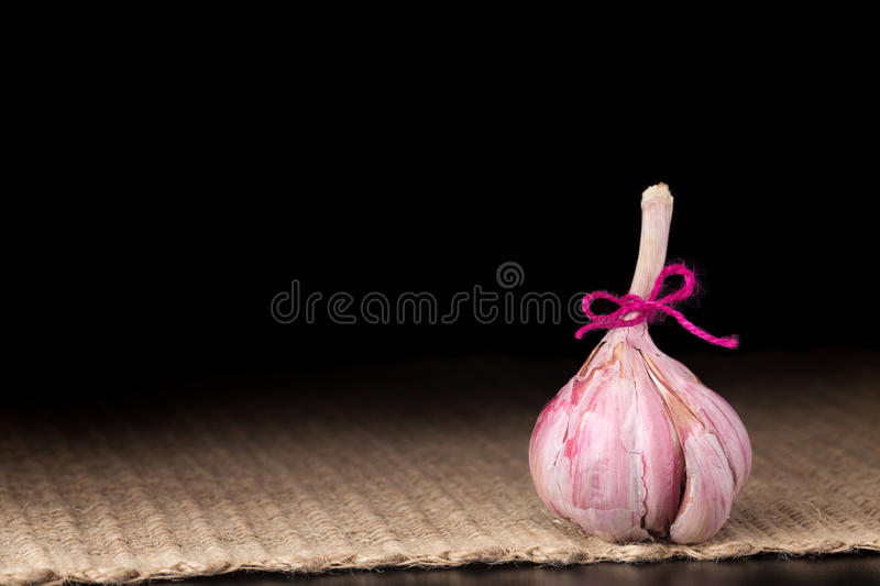 Garlic bulb on the dark background. Pink garlic bulb on the dark background. Rustic surface. One bulb. Horizontal stock photo