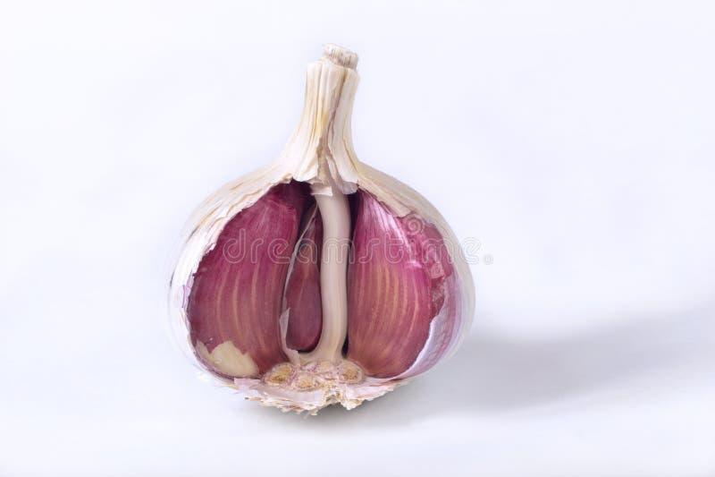 Garlic bulb. Detail view of garlic bulb inside stock photography