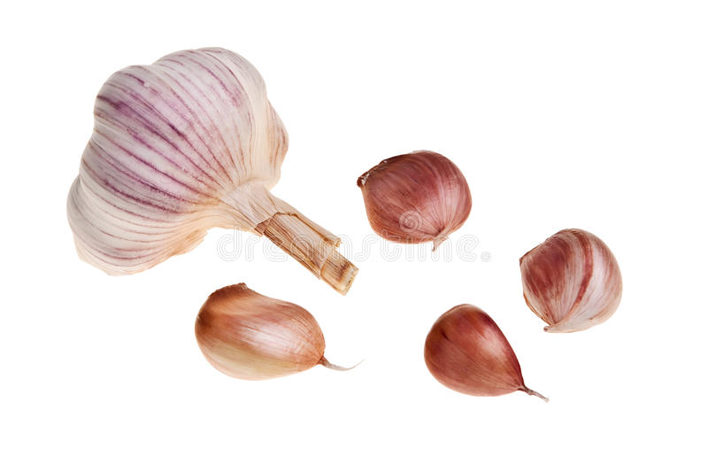 Garlic bulb and few of its pieces. stock image