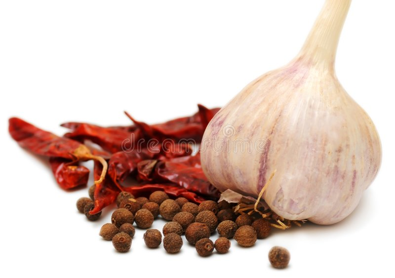 Garlic bulb with spices on white background royalty free stock photography