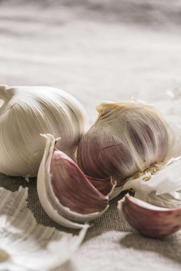 Garlic bulbs arranged on a linen cloth royalty free stock photo