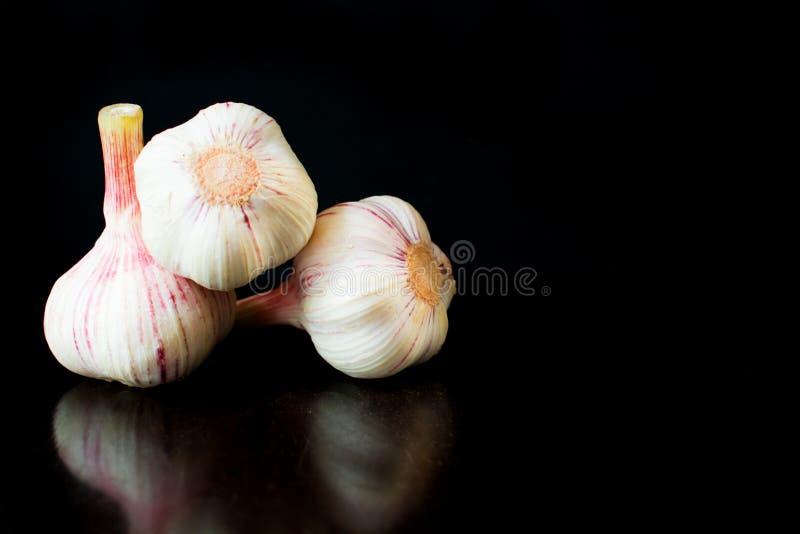 Garlic bulbs, on black background. royalty free stock photos