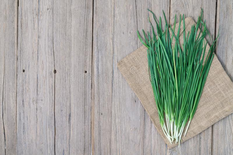 Garlic chive on wood background,top view. Garlic chive on wood background ,top view stock image