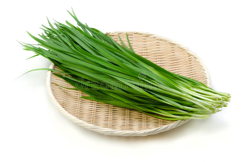 Garlic chives royalty free stock images