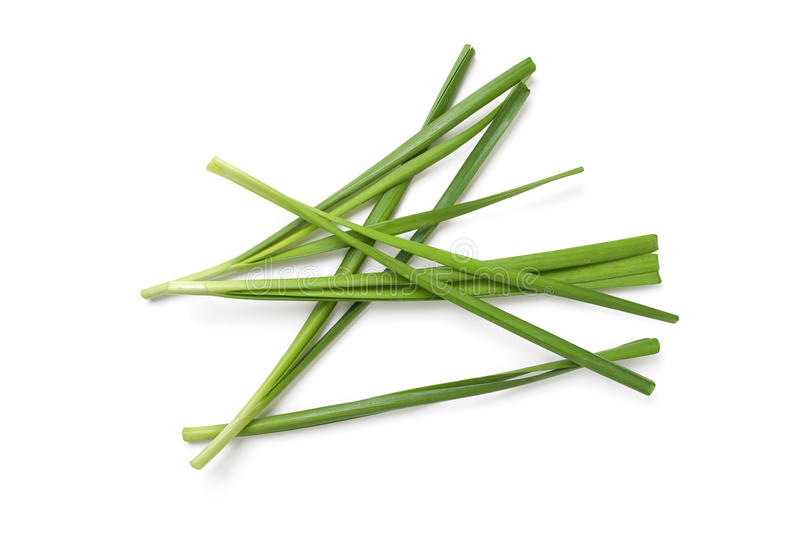 Garlic chives. On white background stock photography