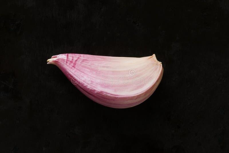 Garlic clove. Single garlic clove on dark background, top view royalty free stock photography