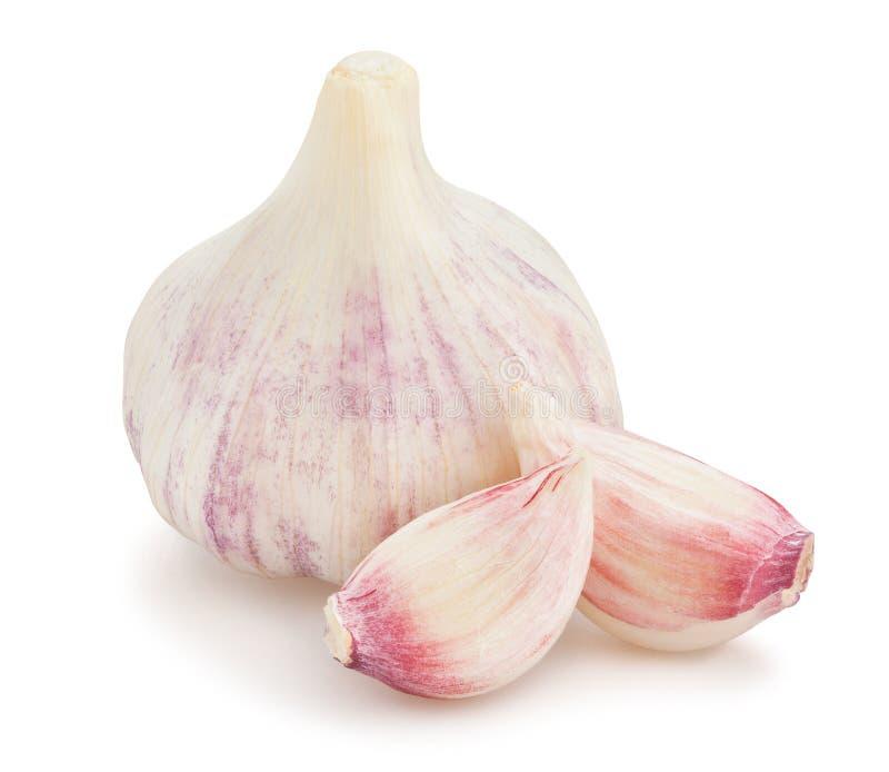 garlic clove stock photo