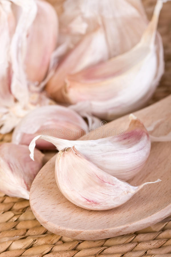 Download Garlic Cloves Royalty Free Stock Photography - Image: 10450577