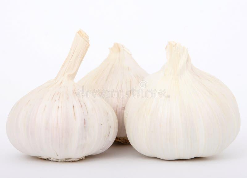 Garlic cloves stock images