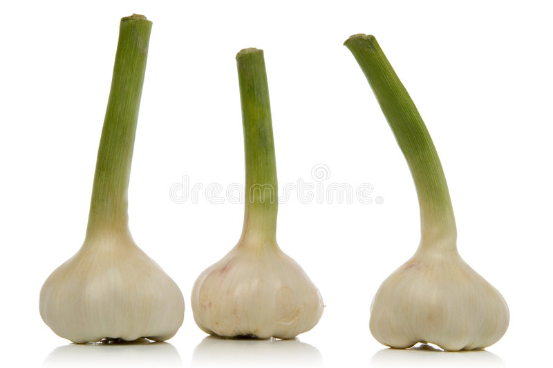 Download Garlic Cloves Royalty Free Stock Photo - Image: 2309495