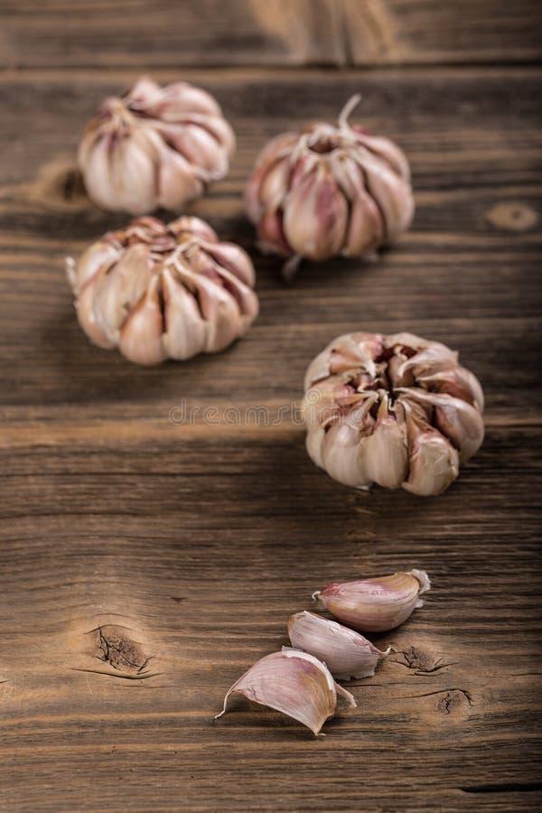 Garlic cloves. And a clump of garlic royalty free stock image