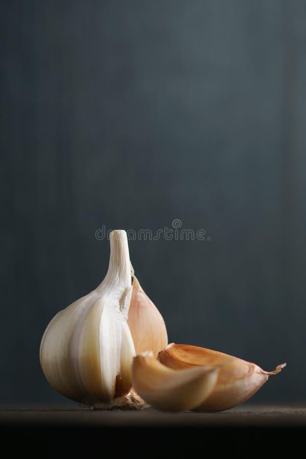 Garlic and garlic cloves on dark stock photo