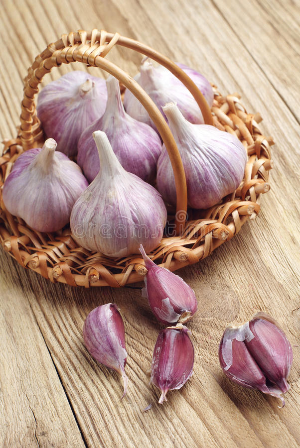 Download Garlic and cloves stock photo. Image of organic, flavor - 33586454