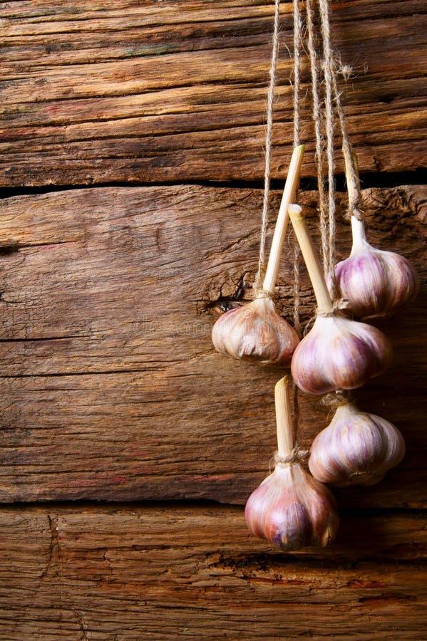 Download Garlic on a cord. stock image. Image of grunge, garlic - 34014807