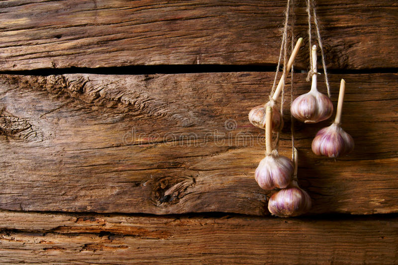 Download Garlic on a cord. stock image. Image of nutrition, background - 34015309