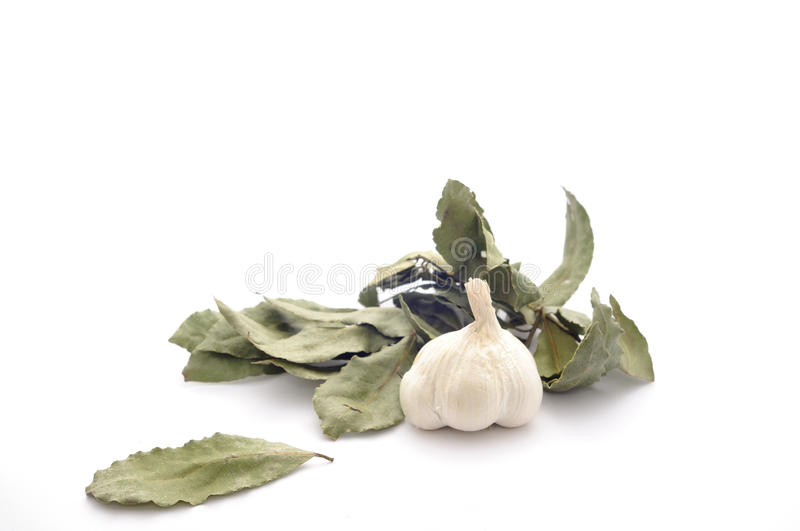 Garlic and dried bay leaf isolated on a white. royalty free stock photos
