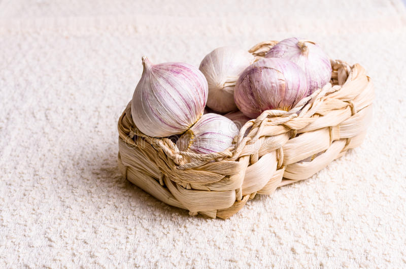 Garlic. Fresh garlics in woven basket, nice background stock photos