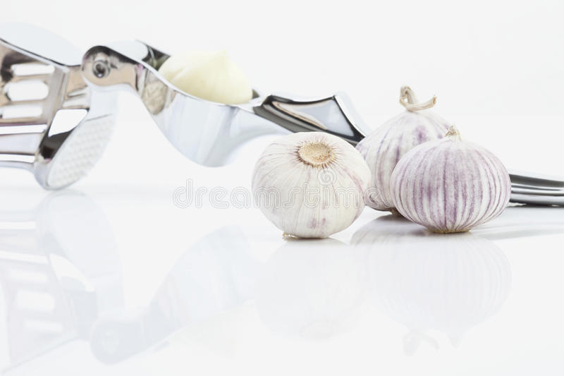 Garlic and garlic press against white background royalty free stock image