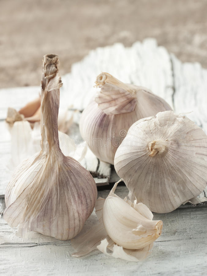 Garlic group styling on wooden background royalty free stock photo