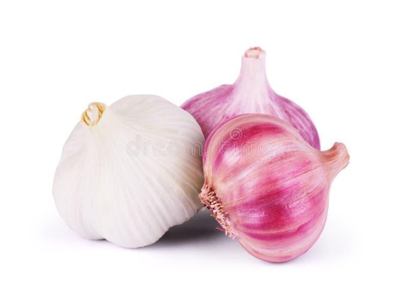 garlic Grupo isolado no fundo branco foto de stock royalty free