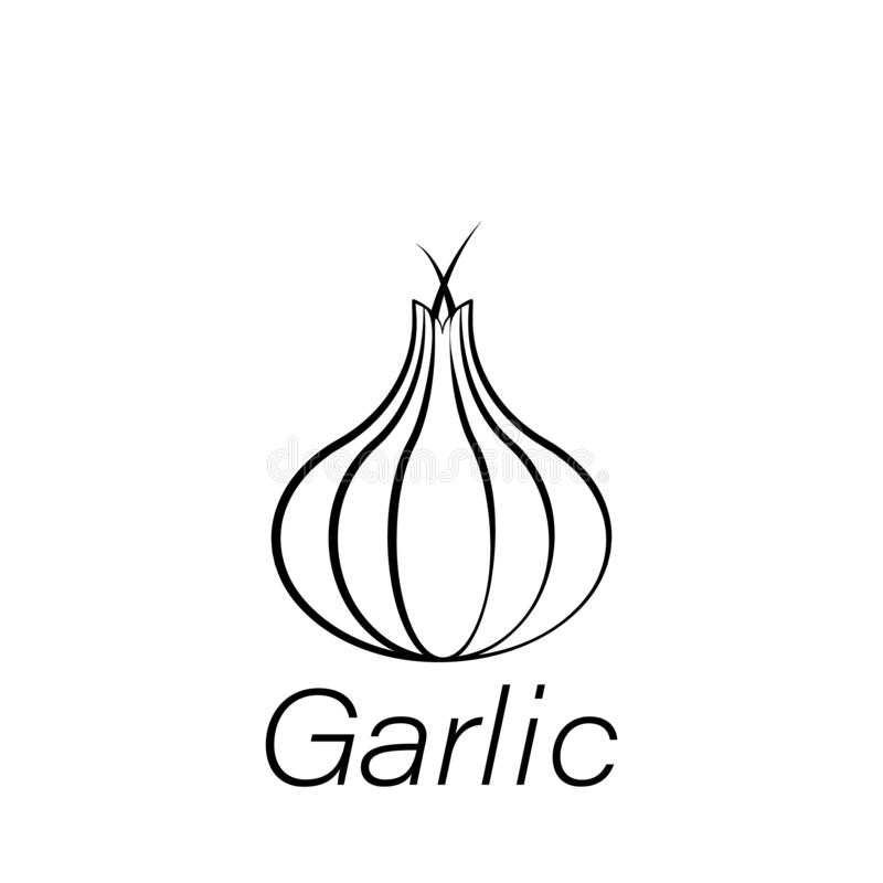 Garlic hand draw icon. Element of farming illustration icons. Signs and symbols can be used for web, logo, mobile app, UI, UX vector illustration