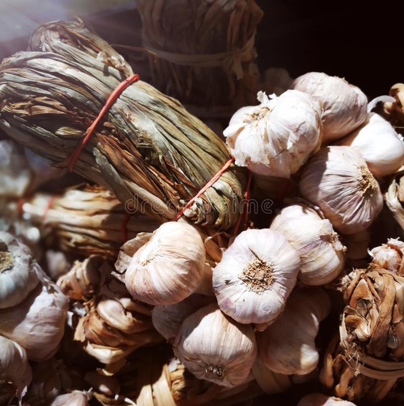 Garlic Herb Spices for cook food. Asian food style natural fresh and aromatic smell royalty free stock photos