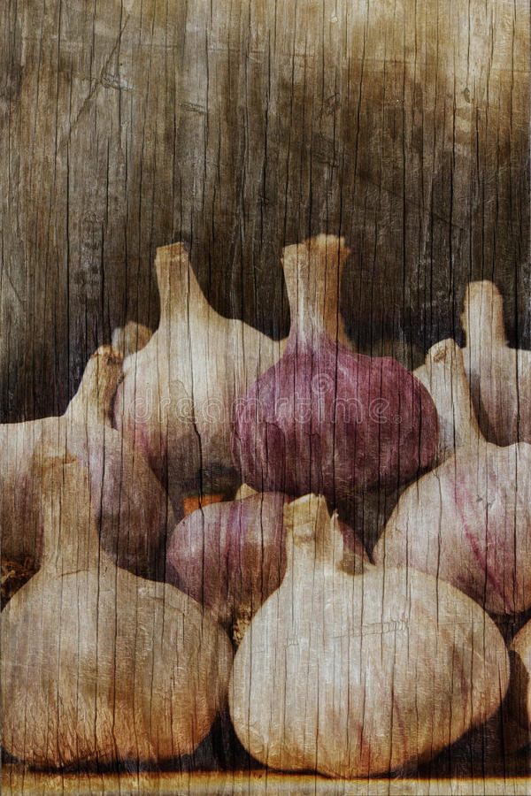 Download Garlic Stock Photos - Image: 34459183