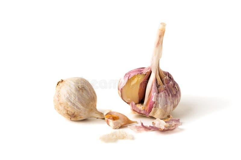Garlic. Isolated on white background royalty free stock photography