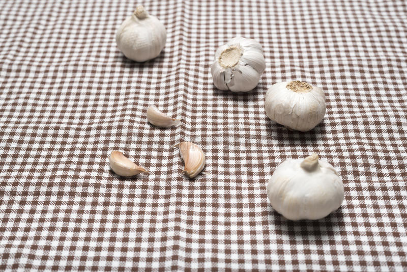 Garlic on kitchen towel stock images