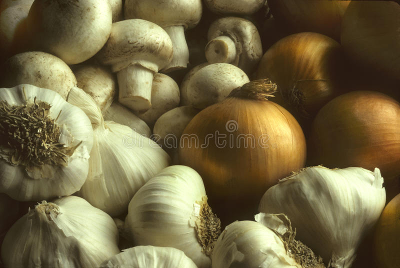 Garlic Mushrooms And Onions In A Pile Royalty Free Stock Photography