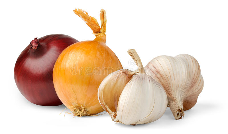 Garlic and onions stock photos
