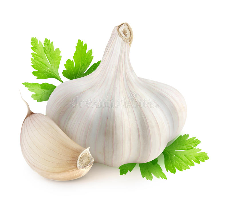 Garlic. And parsley over white background