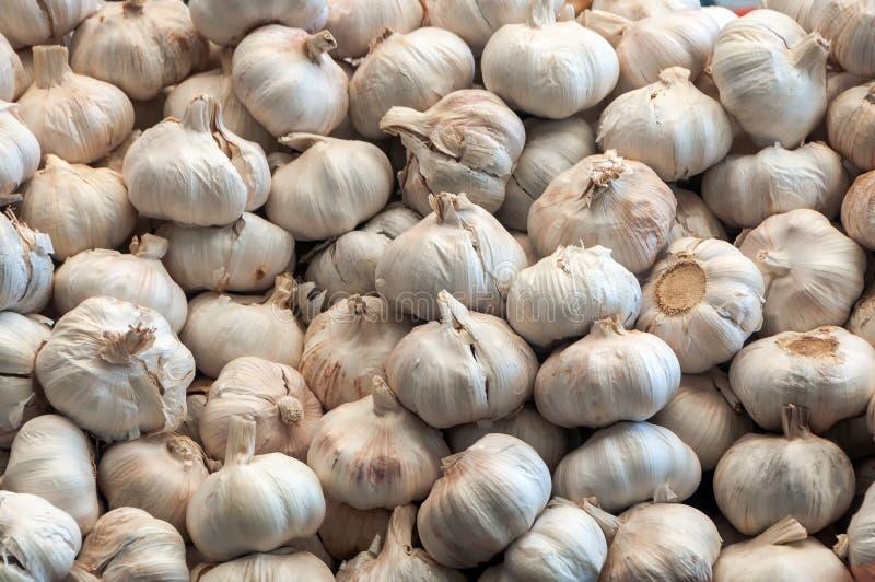 Garlic pile background royalty free stock photography