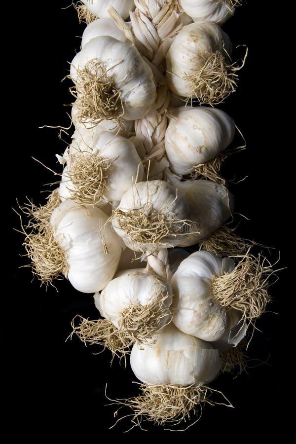 Garlic plait royalty free stock photos