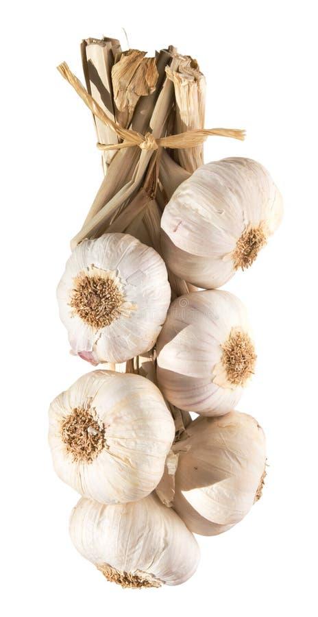 Garlic plait isolated stock photo