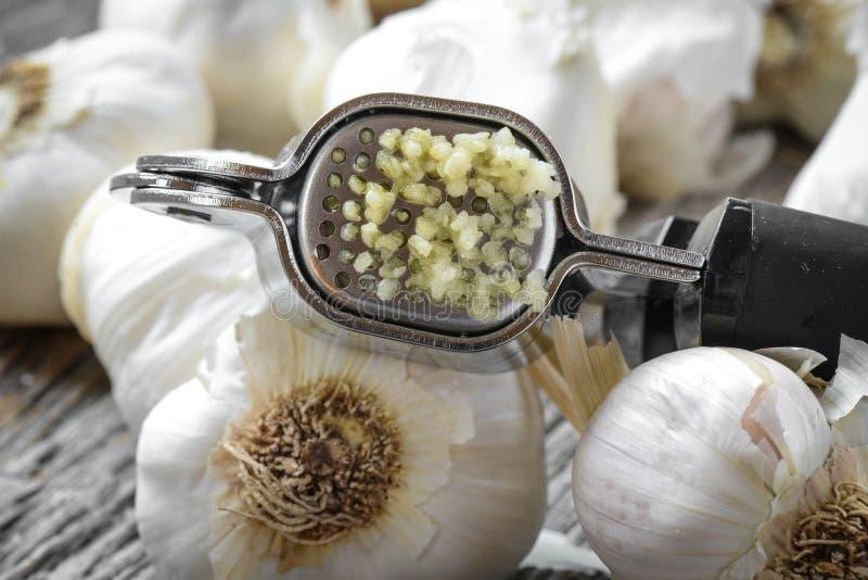 Garlic Press and Garlic Bulb Close Up stock photo