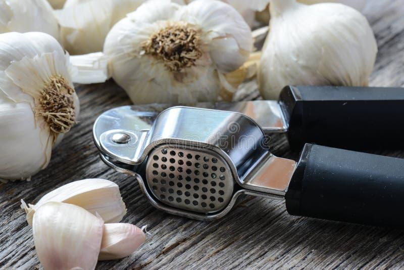 Garlic Press and Garlic Bulb Close Up on Rustic Wood stock images