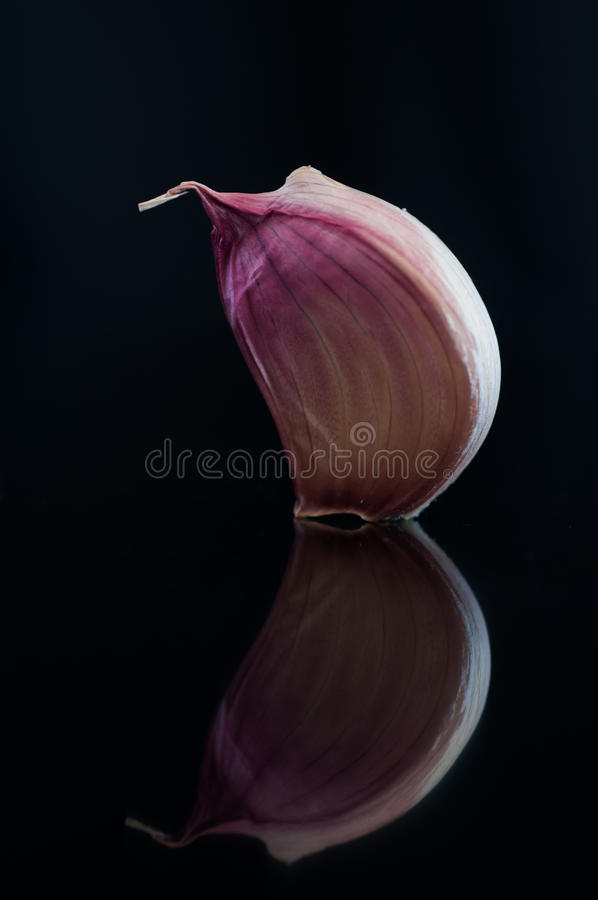 Garlic with reflection royalty free stock photos