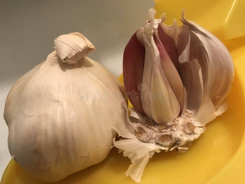 Garlic. Two garlic view royalty free stock image