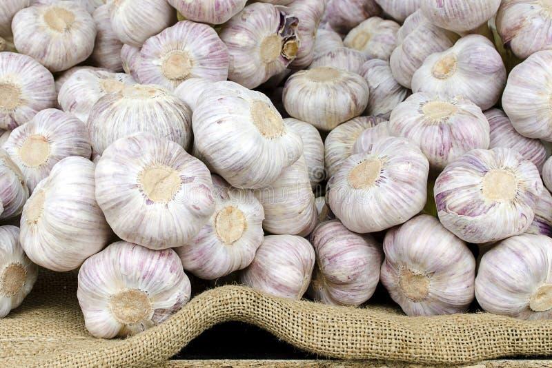 Garlic. Vegetable on display at shop or market stall royalty free stock image